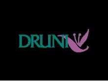 Cupón descuento Druni