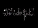 mr. wonderful logo